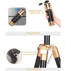 Luz led YONGNUO YN600L 5500K + Cargador de corriente AC